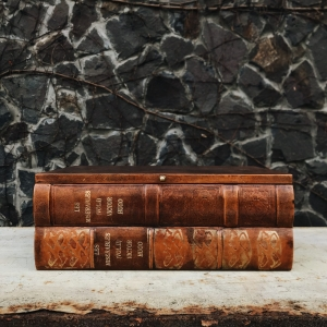 Шкатулка в виде 2х книг