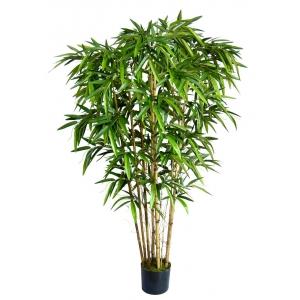 Бамбук декоративный EMERALD